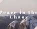 Peace in the Chaos
