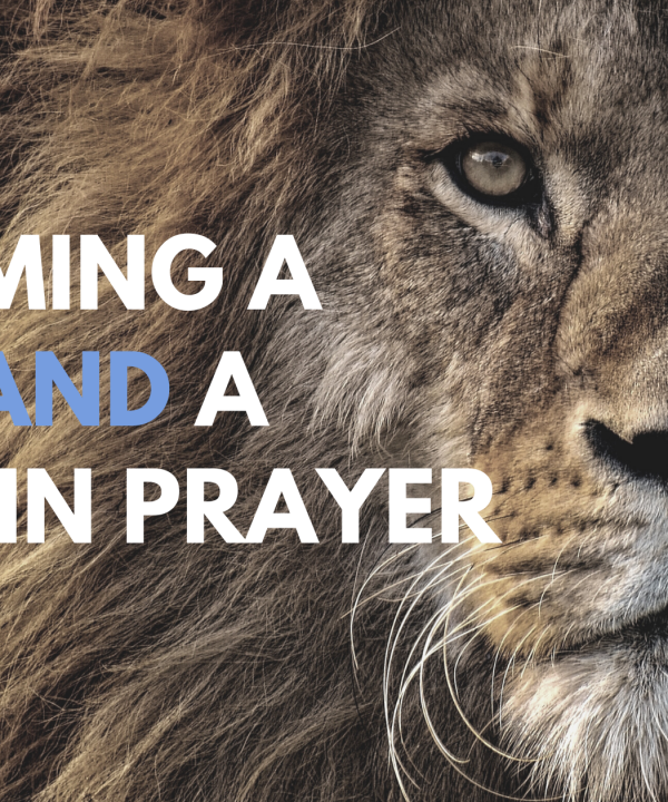 Becoming a Lion and a Lamb in Prayer